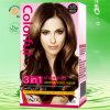 Shampooings colorés moyen de Brown de la plus nouvelle utilisation magique de Chambre 4.00) (