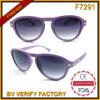 O plástico auriforme da lente do inclinação do cão de F7291 Matt molda óculos de sol da forma