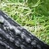 kunstmatige Gras van de Tuin van het Landschap van 40mm het Steen Gebeëindigde (sunq-AL00026)