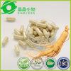 Cápsulas do Ginseng de Panax do suplemento à erva do OEM China