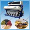 Plastikfarben-sortierende Maschinen-heißer Verkauf