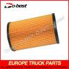 Carburant Cartridge Filter pour la DAF Truck (DB-M18-001)