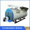 De dubbele Shell van het Roestvrij staal van de Brandstof Boiler van de Buis van de Brand van het Type