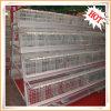 Gaiolas de galinha automáticas da camada do projeto profissional para as galinhas (HXA356-90 HXA458-120)