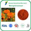 Extrait de fleur de lutéine/souci/zéaxanthine 10%, 40%