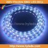 Het Flexibele LEIDENE SMD van de hoogspanning Licht van de Strook (hy-hv5050-48-w)