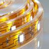 Cintas de la prueba LED del agua (AL-F1212R60-50)
