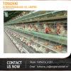 Клетка ловушки птицы цыпленка/типы кладя куриц/клетки цыпленка