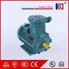 Explosiebestendige Motor in drie stadia met Ce