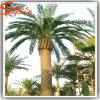 Albero artificiale della palma da datteri della migliore decorazione dell'interno di prezzi