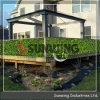 Barriera di plastica del Boxwood del giardino artificiale di Sunwing
