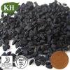 Poudre noire For10 d'extrait de cumin : 1 extrait sativa de Nigella
