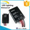 Contrôleur solaire Éclairage-Imperméable à l'eau d'Epever MPPT 20A 12V/24V DEL IP67 Tracer3906bpl