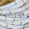 中国の卸売価格の高品質2835本のLEDの縞168LED/M