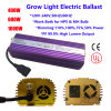 600th HID Hydroponic Electronic Lastre