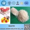 Pork Gelatin Granular Pharma Grade for Soft Capsules