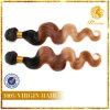 새로운 도착 머리 짜임새 T 색깔 바디 파 머리 최신 판매 머리 연장 (TFH-NL70)