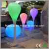 LED Decorative Products