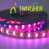 Weicher LED-Licht-Streifen (RH-B5050X60V)