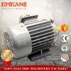 Motor elétrico universal do motor da indução trifásica da série de Y