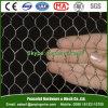 Сетка мелкоячеистой сетки/шестиугольные ячеистая сеть/цыплятина цепляют