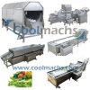 Máquina de lavar de Coolmachs para a linha da trasformação dos vegetais e dos frutos