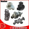 Wasser-Pumpe des Commins Motor-Ktaa38-G9