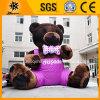 Grosser 6m High Inflatable Fur Teddybär (BMCD31)