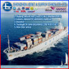 싱가포르에 바다 Shipping Service From 심천 Cheap Sea Freight