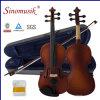 Violino del violino 4/4 dello strumento musicale con la cassa del violino