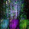 Decorazione esterna di natale della luce laser dell'acquazzone della stella