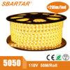 illuminazione esterna ad alta tensione dell'indicatore luminoso IP65 della corda di 110V 220V LED 5050 60LED/M