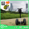 2 rotelle Self Balance Caraok Scooter in Cina