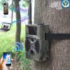 086デジタルInfrared Outdoor Camera Trap 940nm