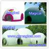 Tenda gonfiabile verde di mostra/tenda di esposizione (MIC-079)