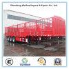 De pieu de mur latéral de frontière de sécurité remorque de camion semi avec 3 essieux