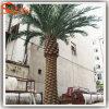Palmeira artificial personalizada da data para a decoração ao ar livre