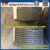 Rete metallica saldata di vendita calda dell'acciaio inossidabile 304