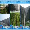 中国の工場供給の高品質テープタイプHDPEの黒の日曜日の陰のネット