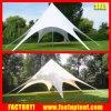 Nuova tenda della stella dello schermo della stella di disegno per il parasole