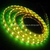 5050 SMD IP68 tira flexible impermeable del LED RGB Nuevo Estilo Luz de la cuerda