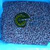 Nueva IQF cultivos Frozen Wild Blueberry