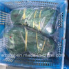 0.35 mm Twine Monofilament Fishing Net