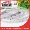 12V o 24V SMD5050 impermeabilizan la luz de tira de IP65 LED
