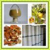 مصنع 50%-95% برتقالين مسحوق ليمون [أورنتيوم] مقتطف مسحوق برتقالين