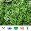 Les meilleures frontières de sécurité en bambou artificielles de vente de feuille de jardin extérieur meilleur marché