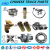 Over 2000 Items of Chinese Shacman Truck Spare Parts