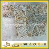 庭またはテラスのための磨かれたGolden Persa Granite Paving Stone