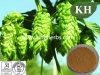 Natuurlijke Flavones van de levering 4% Uittreksel van de Hop