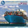 덴마크에 믿을 수 있는 Quick Ocean Freight 중국